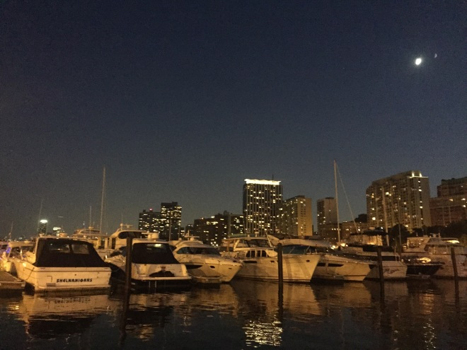 Marina City Life