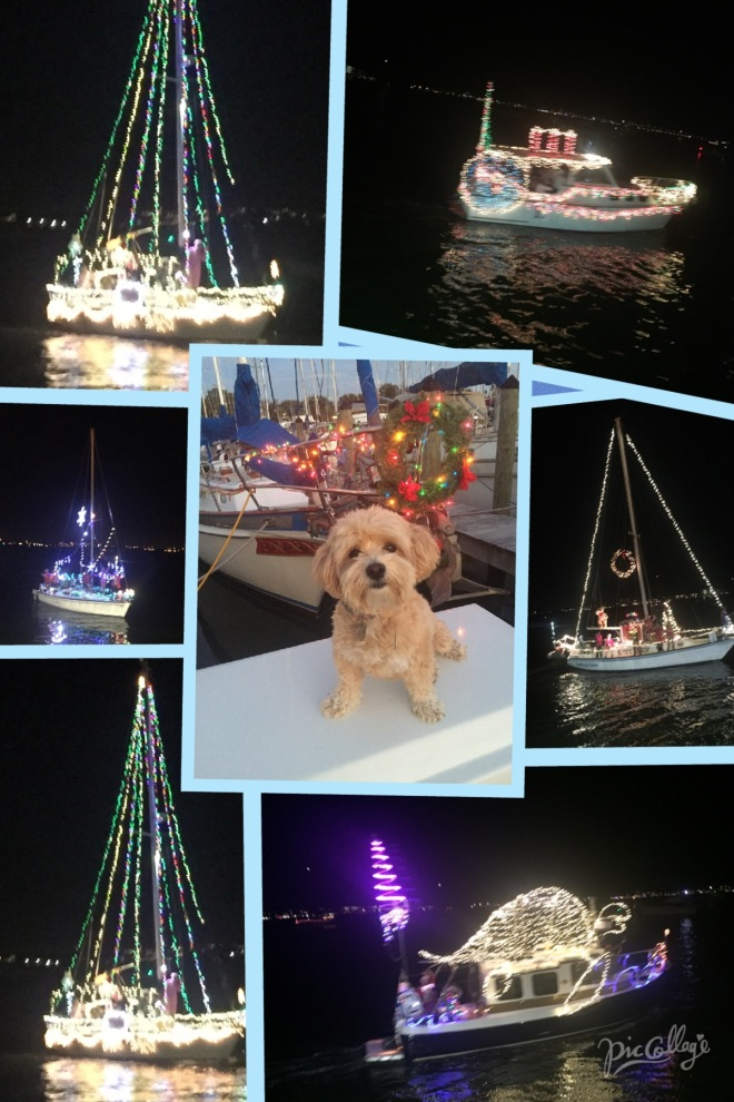 The Holiday Boat Parade in Gulf Port just before flying home.