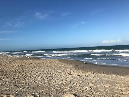 A beach. . .